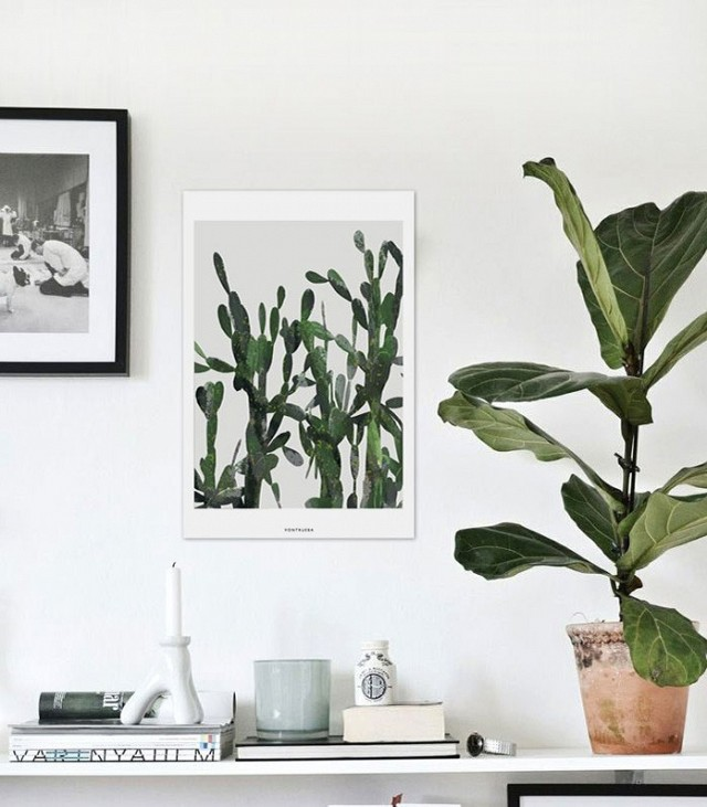 a-busy-girls-guide-to-greenery-at-home-1695818.640x0c